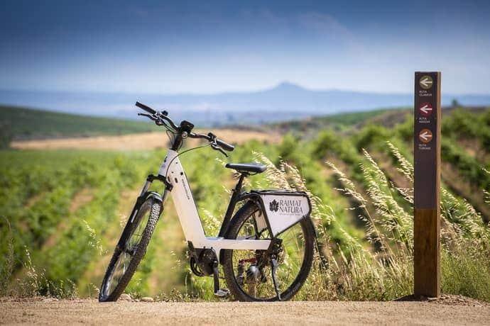 Electric bikes Renting